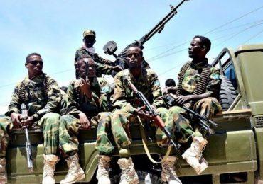 Head of al-Shabaab's explosives killed in Lower Shabelle region