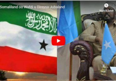 DAAWO VIDEO: Ma Dhabbaa in Somaliland ka qeybgaleyso Caleesha saarka Axmed Madoobe?! (Ogow Xaqiiqda)