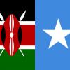 Kenya informs Somalia implementation of Somalia-Kenya flights and visa deal