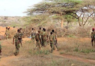 DAAWO SAWIRRO: JUBBALAND: Waxaynu khaarijinay Saraakiil ka tirsanaa Ururka Al-Shabaab