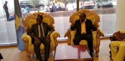Somalia and Djibouti to cooperate on information sharing