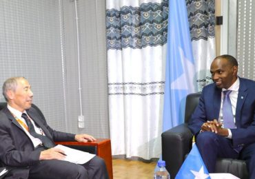 Somali PM and US ambassador discuss progress towards peace and stability