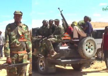 DAAWO VIDEO: Maxaa ka jira in Somaliland ay degmada Taleex ku soo dhaweysay ciidamo ka soo goostay Puntland?